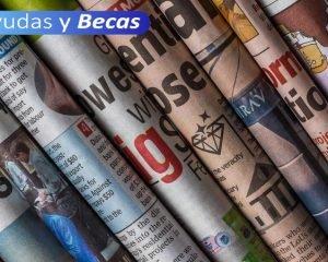 Curso online [Seminario sobre periodismo político] 14