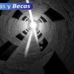 BECAS DEL ESTUDIO 5
