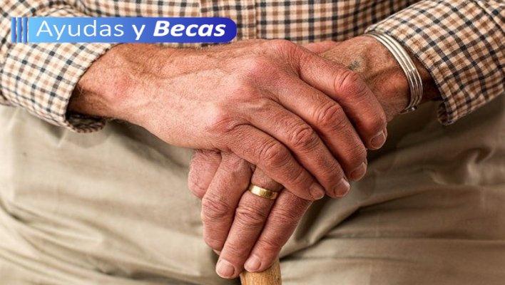 subsidio de adultos mayores